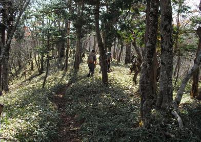 8 大峰奥駈道・一ノ垰への道