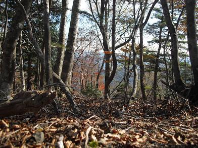 11 高塚山へ後少し