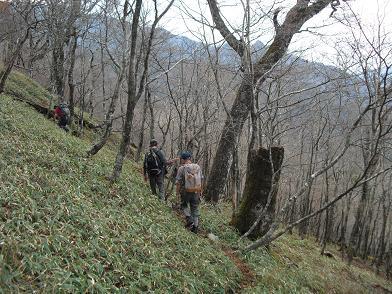 14 大峰奥駈道・出合へ向かう