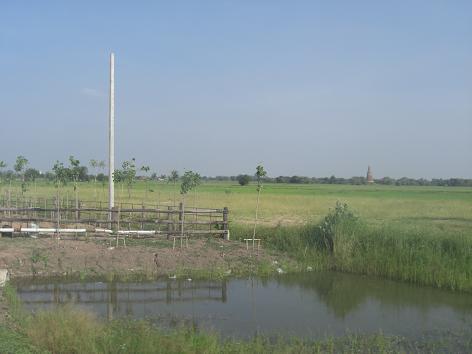 8 バンコクの郊外の田園