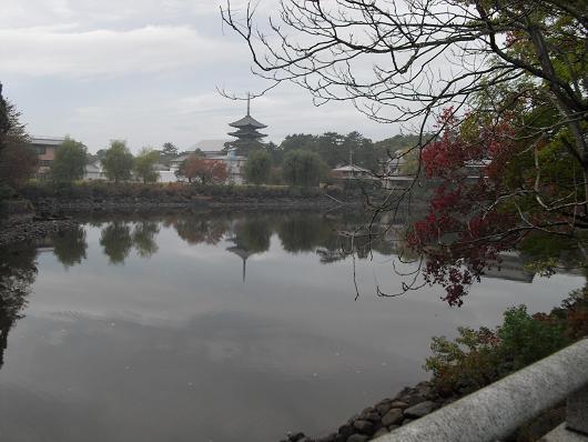 7 荒池と興福寺