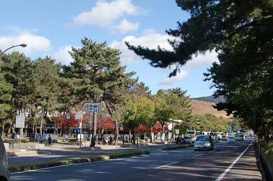 2 奈良県庁前