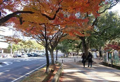 3 奈良県庁前