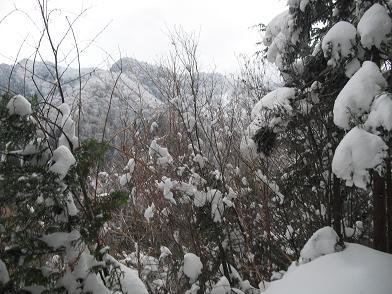5 雪の稜線