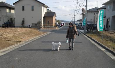 3 うれしい散歩中
