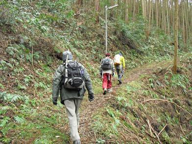 4  栃ケ山・登山