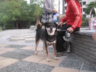 006_20110818201119.jpg