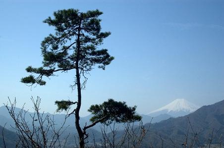 tenjinyama-fuji