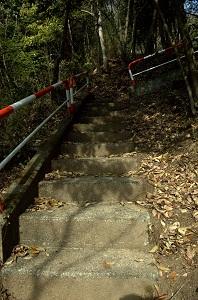 登山口付近の階段