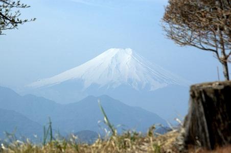岩殿城跡から富士を眺める