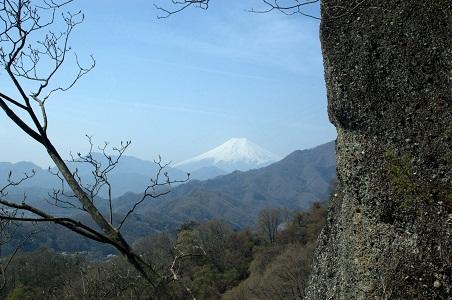 ここからも富士