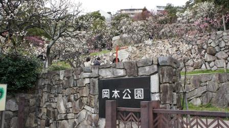 岡本梅公園 (10) - コピー