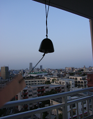 furin_p20.png