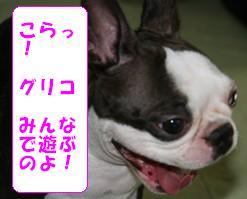 asobo4.jpg