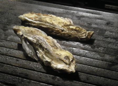 イルソーレの牡蠣
