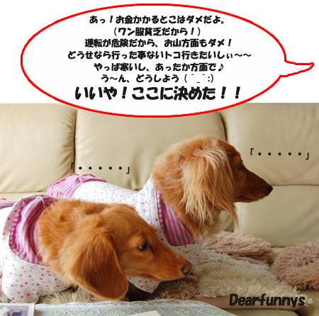 me_2_0131_K.jpg