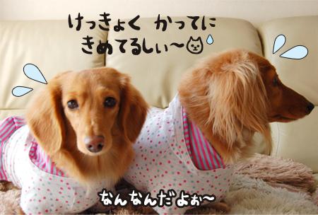me_3_0131.jpg