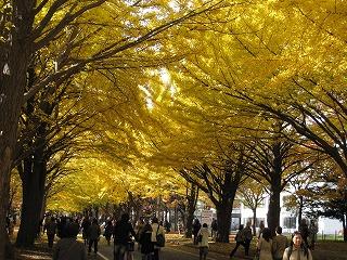 1103北海道大学01
