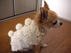 わーい、お団子セーターが2着になった!