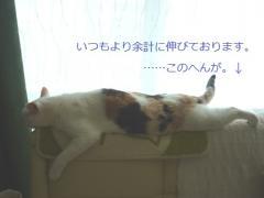 mojiP1000615.jpg