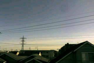 20080117150548.jpg