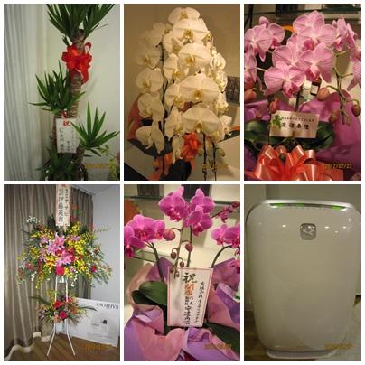 花と加湿空気清浄器