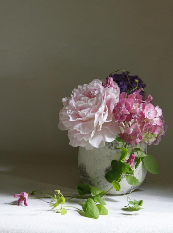 芍薬&紫陽花