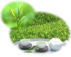 「お茶」を飲みましょう。