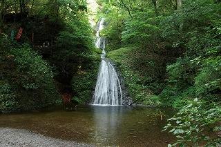 「 阿寺の七滝 」 全長64m 7段の階段状に流れ落ちている。