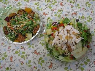 右 「 高原野菜入り森林鶏の30品目サラダ 」          左 「 桜島鶏ゴールドのピリ辛揚げサラダ 」
