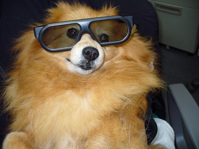 3D眼鏡2