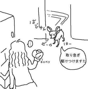 toriisogi
