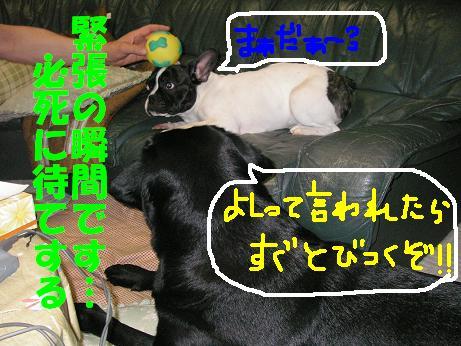 20060509194004.jpg