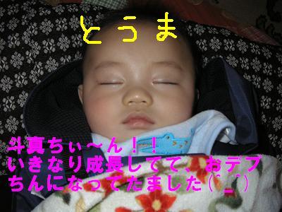 20061124185012.jpg