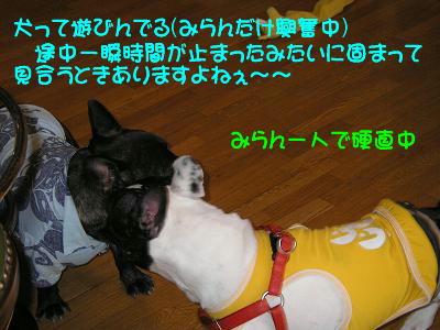 20070505151120.jpg