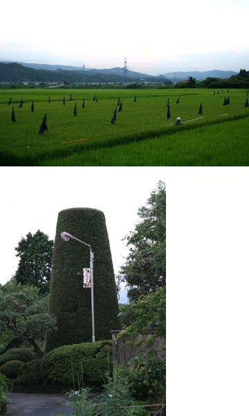2007fukushima_03.jpg