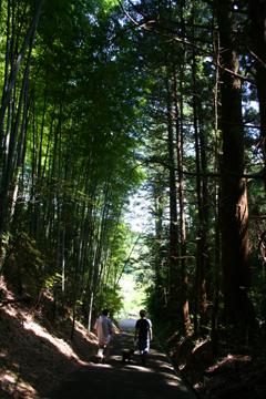 2007fukushima_06.jpg