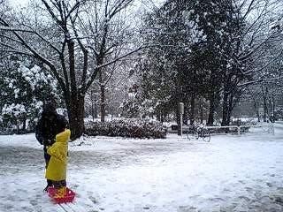 080203_1152~0001雪の石神井公園ソリ遊び 正向