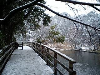 080203_1158~0001雪の石神井公園 反対側から見た 橋 正向
