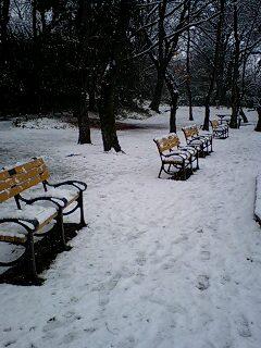 080203_1204~0001雪の石神井公園 ベンチ