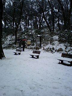 080203_1206~0002雪の石神井公園古いベンチ