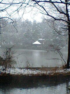 080203_1206~0001雪の石神井公園対岸から見た東屋