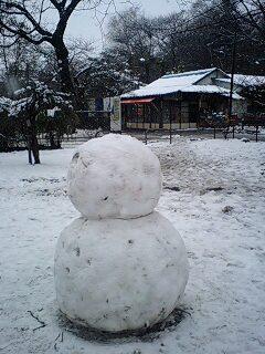 080203_1629~0001雪の石神井公園大きな雪だるま