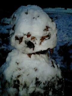 080203_1732~0001雪の石神井公園枯葉で余り綺麗じゃない雪だるま