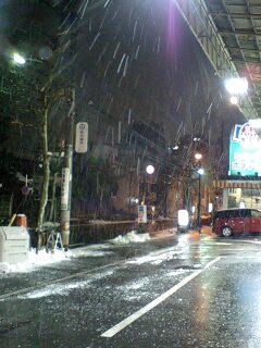 080203_2105~0001いまだ雪止まず