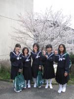 ひな 入学式