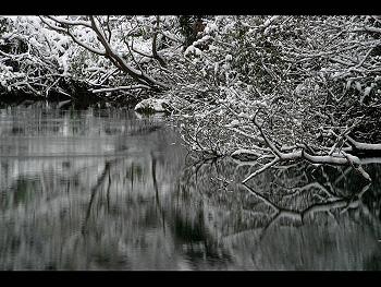冬の美東-2