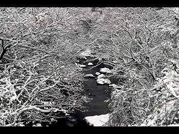 冬の美東-1