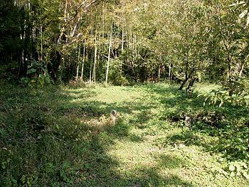 本誓寺跡(ほんせいじあと):銅山無縁墓地