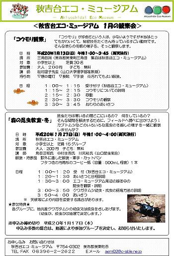 エコ・ミュージアム 1月の観察会